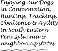 Enjoying our Dogs in Conformation, Hunting, Tracking, Obedience & Agility 